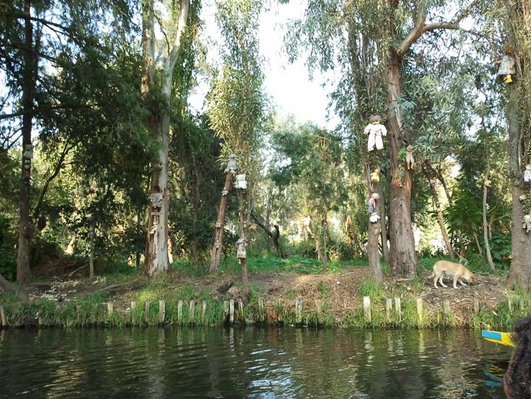 """Dolls hung in Santana Barrera's chinampa in Xochimilco"" by Amrith Raj - Own work. Licensed under CC BY-SA 3.0 via Wikimedia Commons - http://commons.wikimedia.org/wiki/File:Dolls_hung_in_Santana_Barrera%27s_chinampa_in_Xochimilco.jpg#/media/File:Dolls_hung_in_Santana_Barrera%27s_chinampa_in_Xochimilco.jpg"