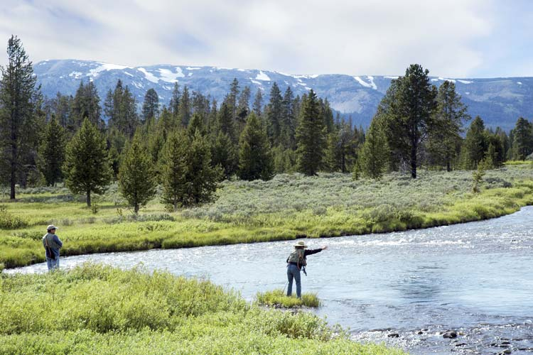 Things to do in yellowstone you really shouldn 39 t miss for Yellowstone national park fishing