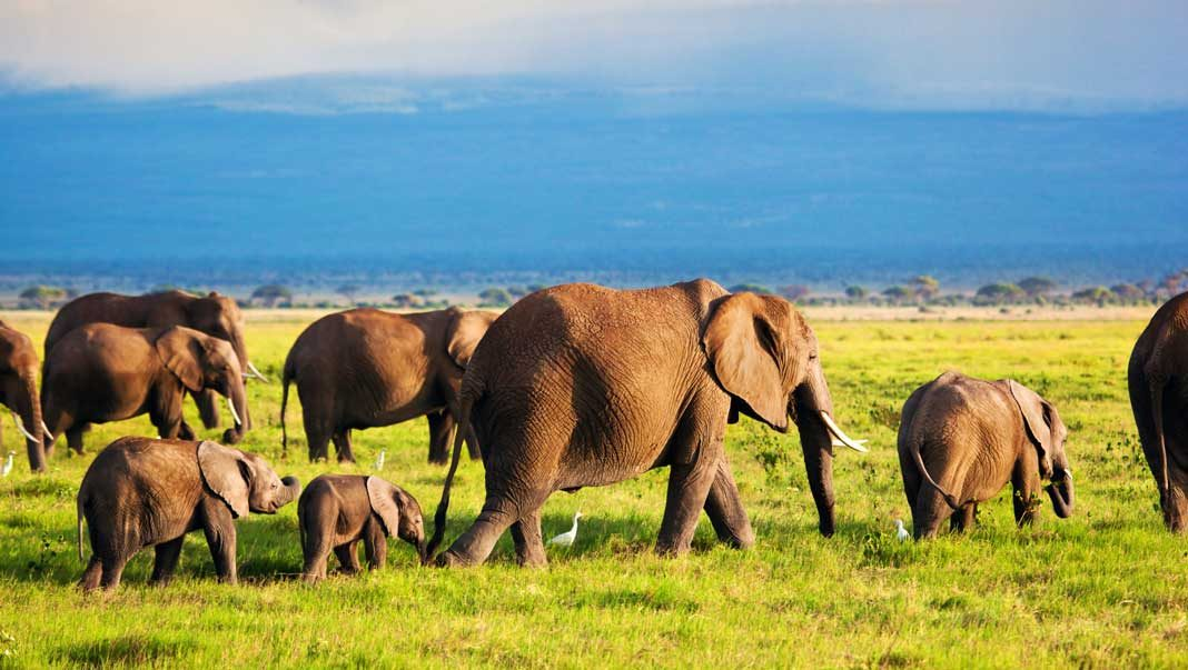 Kenya's Tourist Attractions