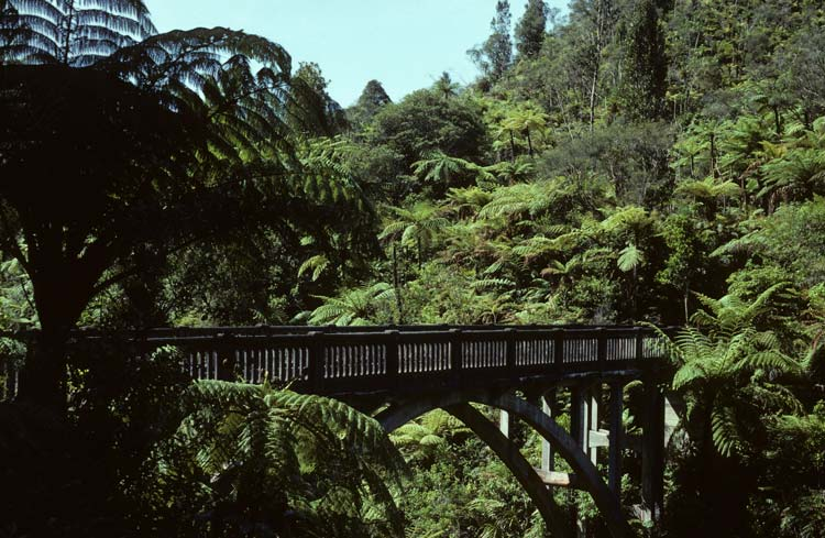 Bridge To Nowhere, Whanganui National Park, North Island, New Zealand