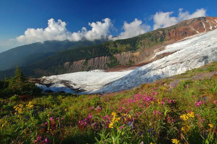 Glacier in Summer, North Cascades National Park, Alaska