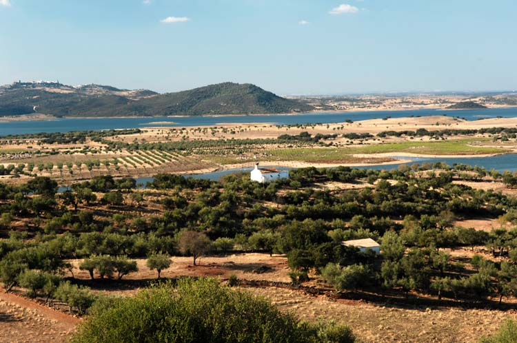 Typical Landscape of Alentejo, Portugal