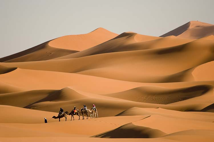 Amazing Deserts and the Cool Things You can do There