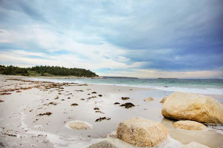 Nova Scotia Nudity 65