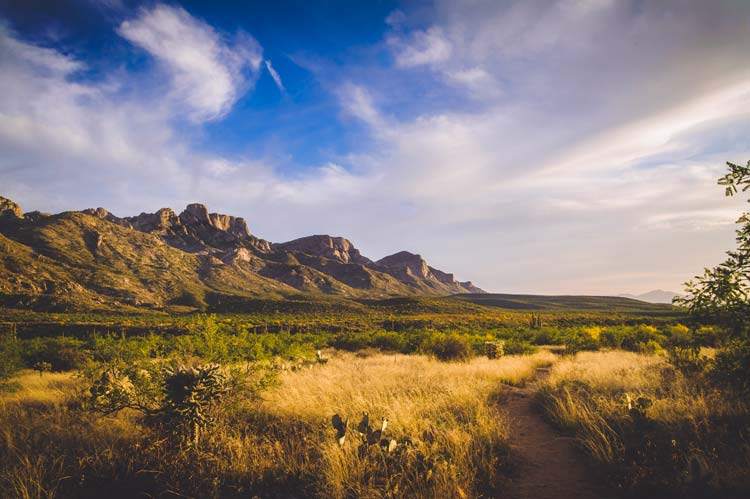 Catalina Mountains in Tucson