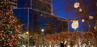 Light Displays for the Holiday Season