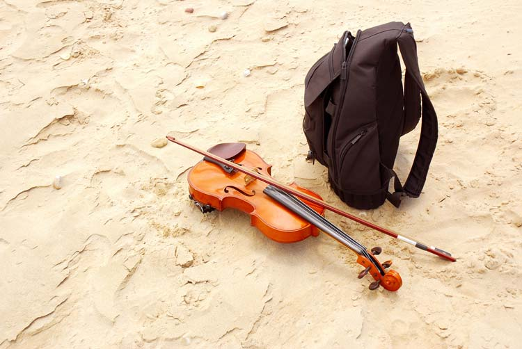 Travel with your Violin