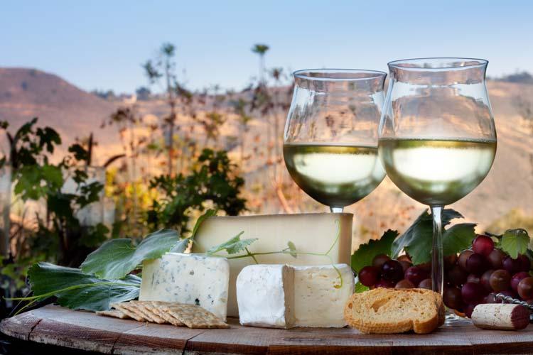 Wine tasting in California