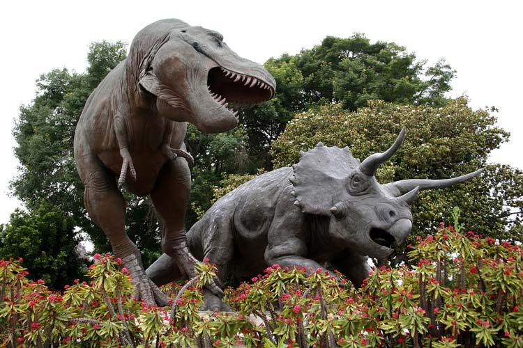 Dinos at Natural history museum Los Angeles