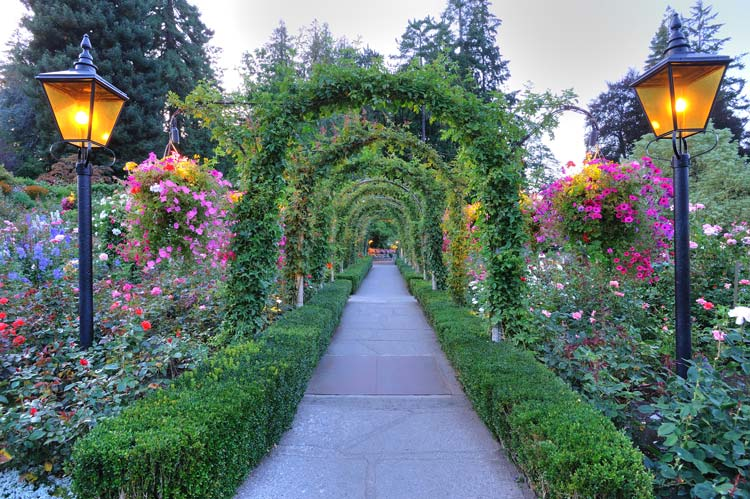 Stop And Smell The Roses The Best Rose Gardens In The U S