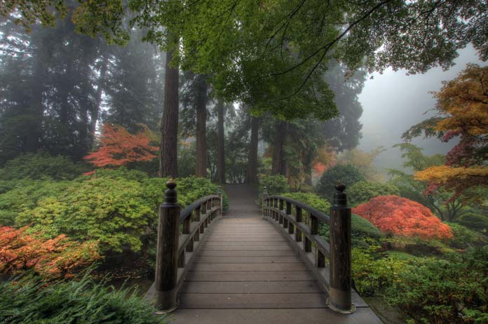 When to visit Portland Japanese Garden