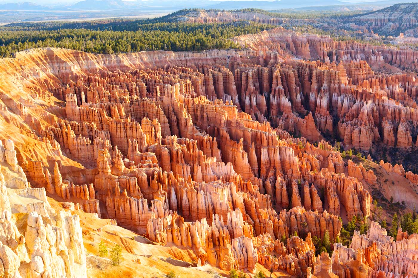 Come See the Hoodoos in Bryce Canyon National Park