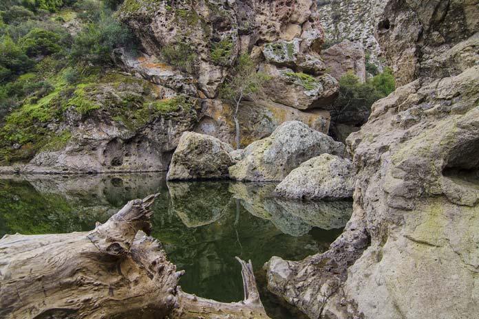 Malibu Creek
