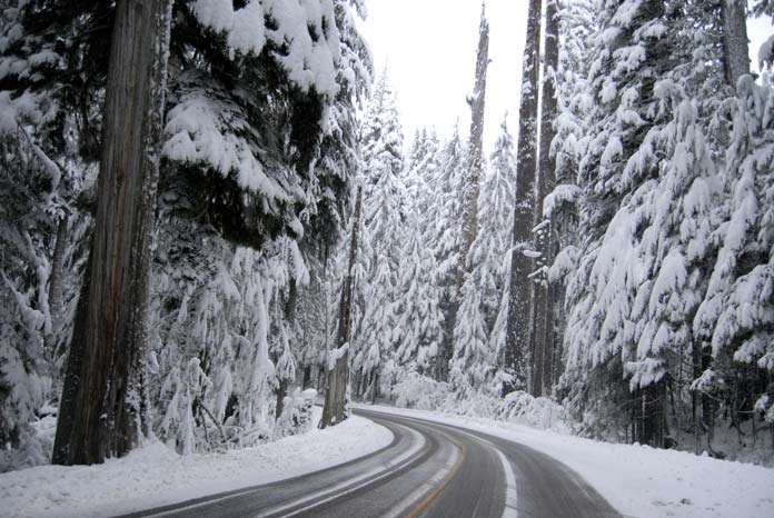 Winter Road Mount Rainier