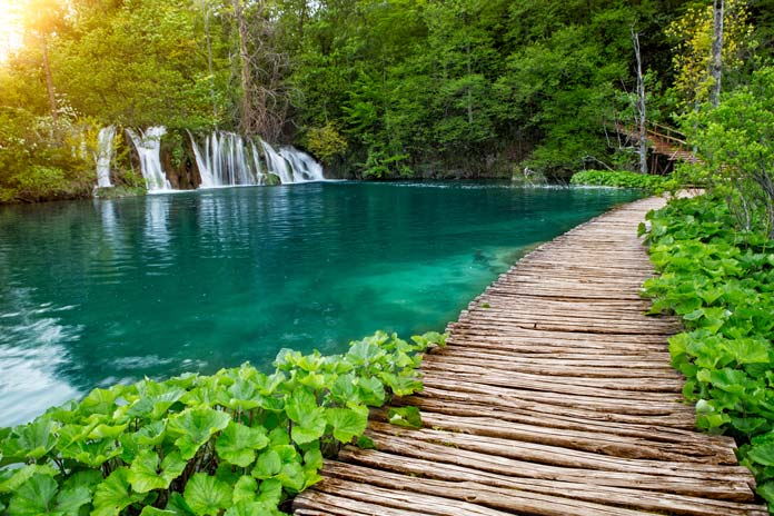 Pathway in Plitvice Lakes National Park Croatia
