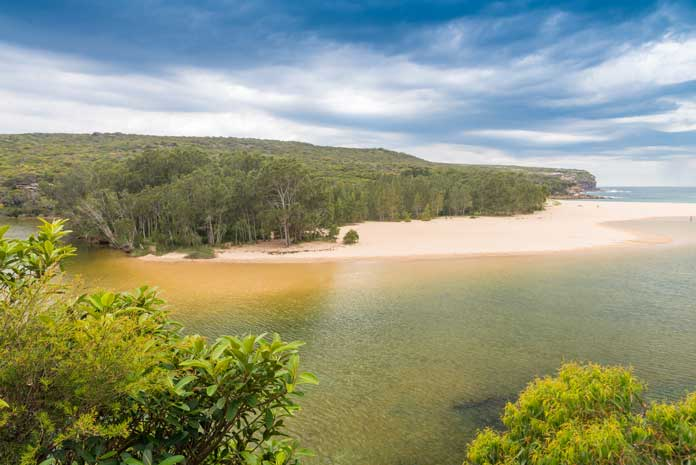 Royal National Park in New South Wales