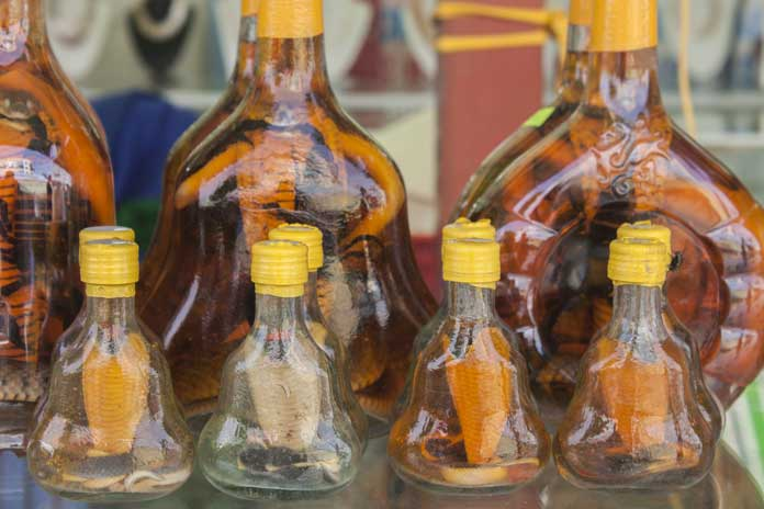 Scorpion Snake Liquor