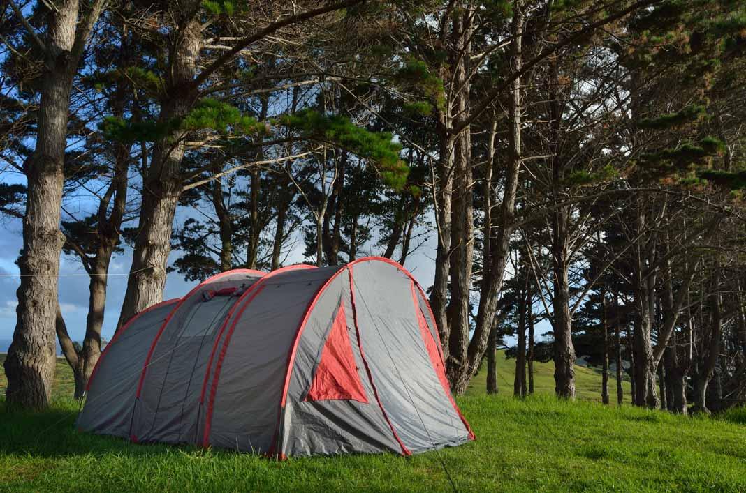 Accommodations New Zealand