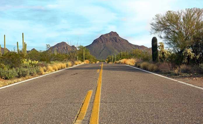 Saguaro National Park Scenic Drives