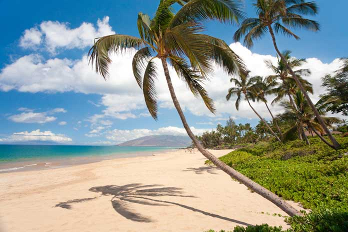 beaches of Maui