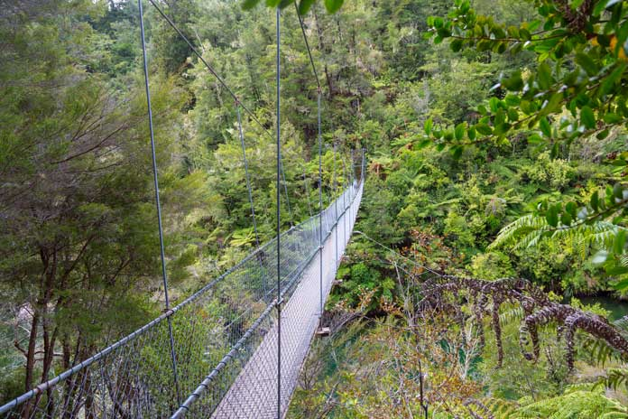 rope bridge Abel Tasman