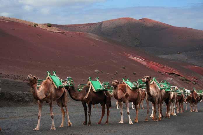 camer ride Timanfaya