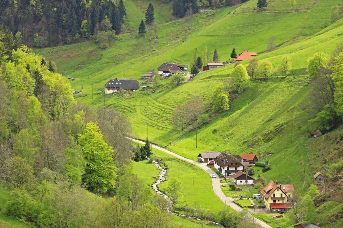 The Most Beautiful Views Of The Black Forest Germany
