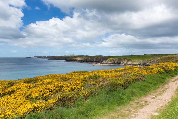 Coast Path Wales