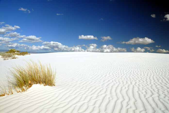 Visit the White Sands