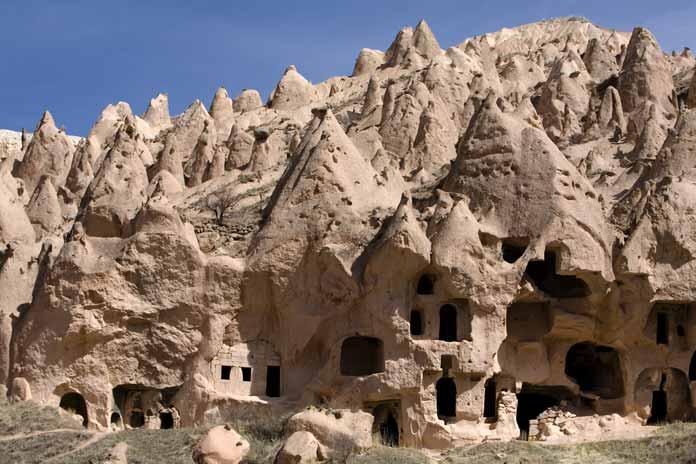 Natural and Cultural History