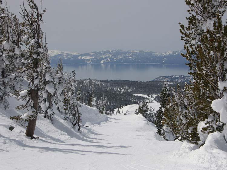Alpine-Meadows-Resort
