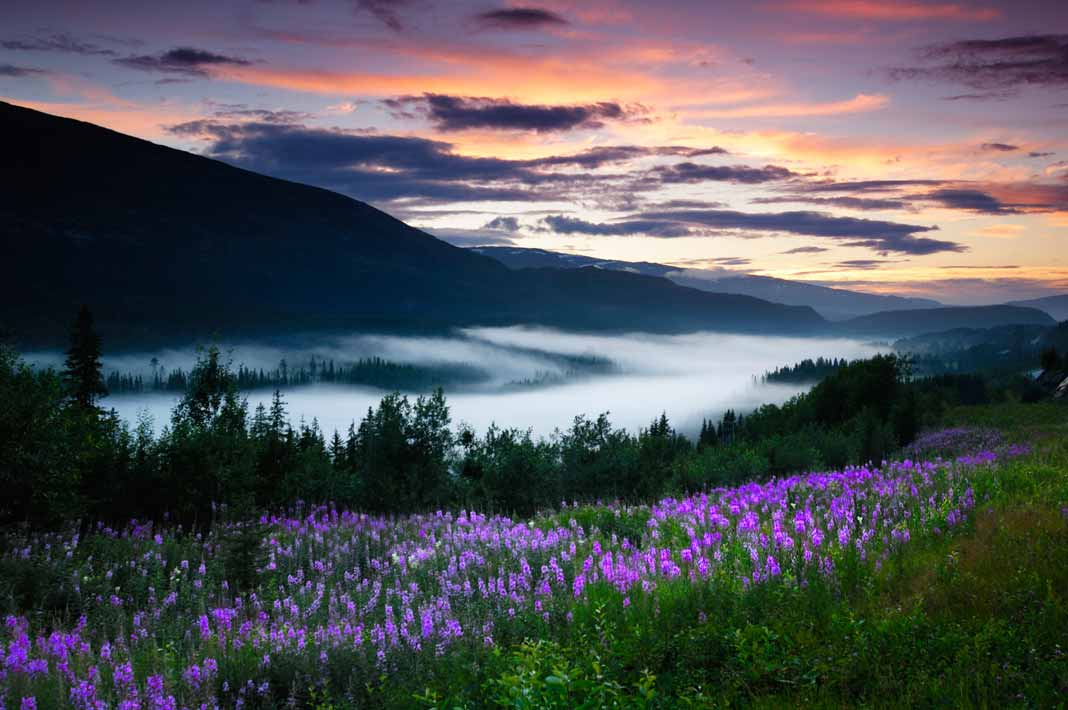 National parks in Scandinavia offers scenery you can't ...
