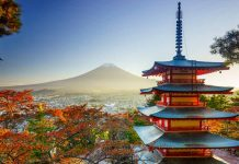 round trip to Japan