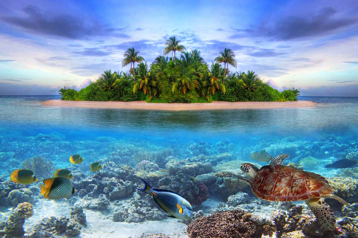 Explore The Huge Potential Of The Smallest Countries In The World - Smallest ocean in the world